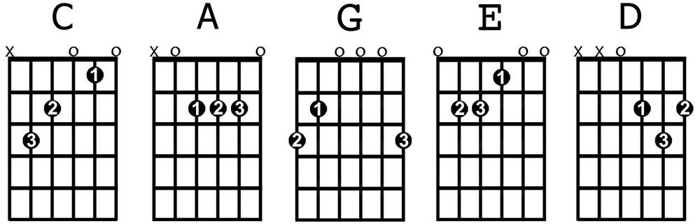 Guitar Beginner