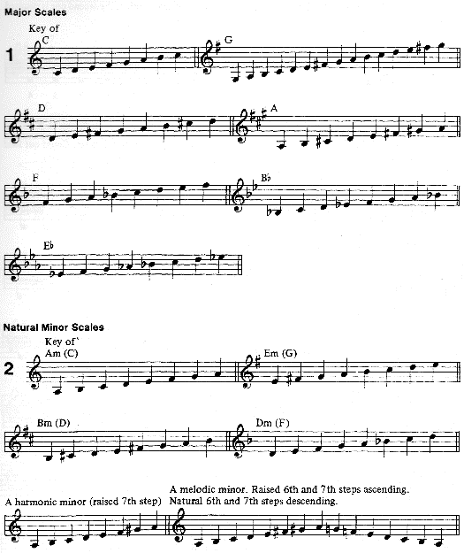 classical-guitar-lessons-for-beginners_1.png