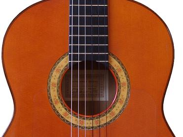 flamenco guitar lessons. Black Bedroom Furniture Sets. Home Design Ideas